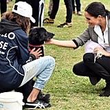 Meghan Markle With Animals Pictures