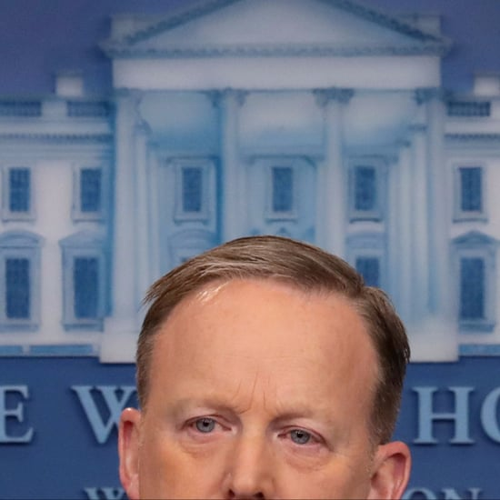 Sean Spicer Cutout Bush Decoration