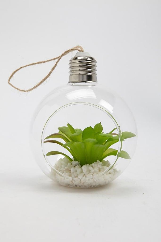Hanging Glass Terrarium Best Gifts For College Girls Popsugar