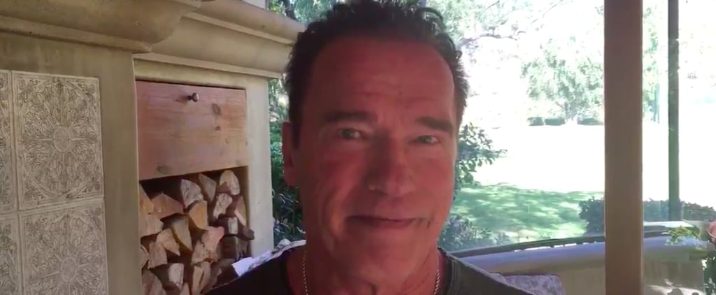 Arnold Schwarzenegger Responds to Donald Trump's Insults