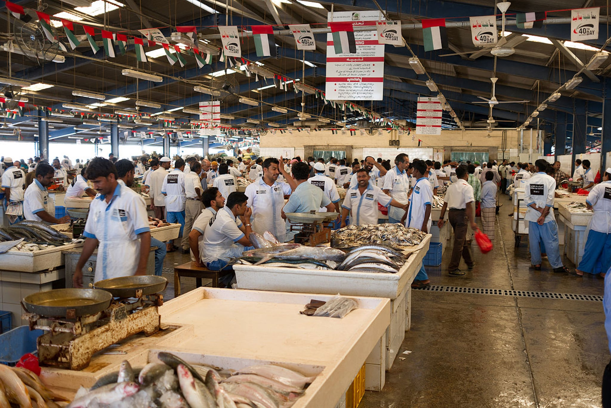 Dubai's New Fish Market Opens in Deira | POPSUGAR Middle East Food