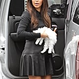 Kim Kardashian Cuddles Up to Her Cute New Companion Mercy
