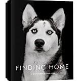 يُبرز هذا الصندوق الجميل من بطاقات علامة Finding Home  (بسعر 15$ دولار أمريكي؛ 56 درهم إماراتيّ/ريال سعودي) صوراً لـ12 كلباً من كلاب الملاجئ وقصص إنقاذهم. كما استطاع المصوّر تراير سكوت إظهار شخصيّة كلّ واحد منهم بطريقة الاستعراض المذهل ذاك.