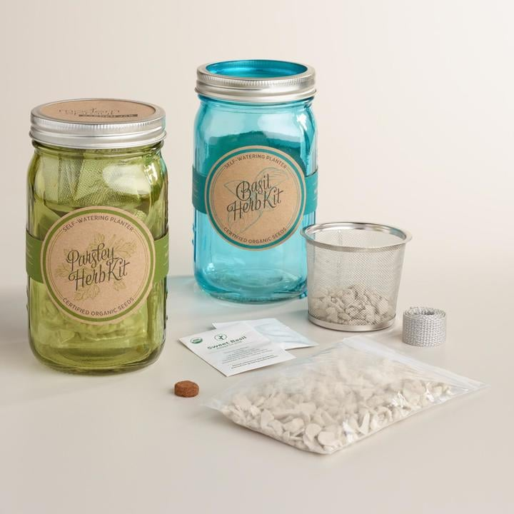 Organic Herb Mason Jar Garden Kits Set of 2