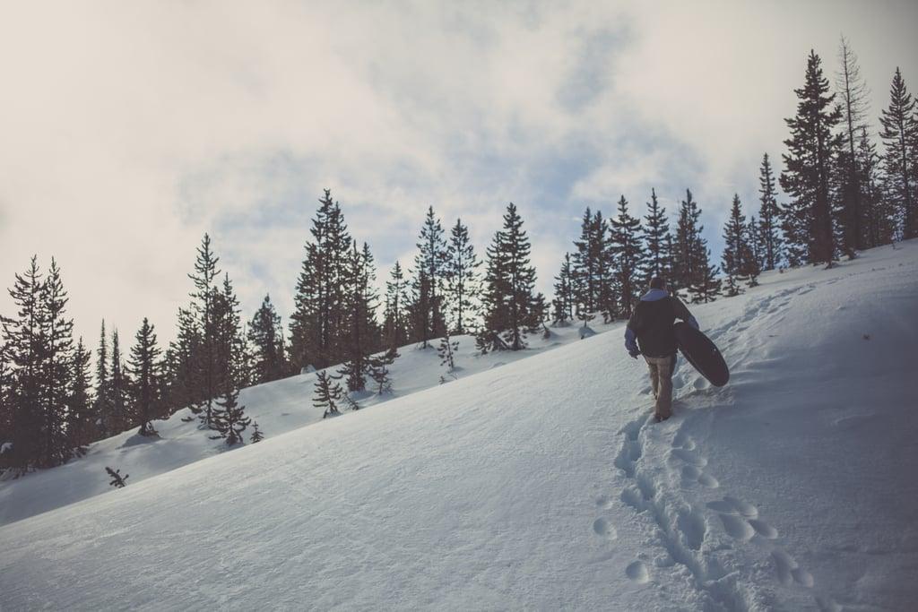 Go sledding.
