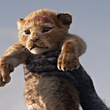 The Lion King Reboot Pictures