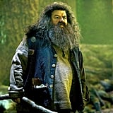 Hagrid is more powerful than any of us realize.