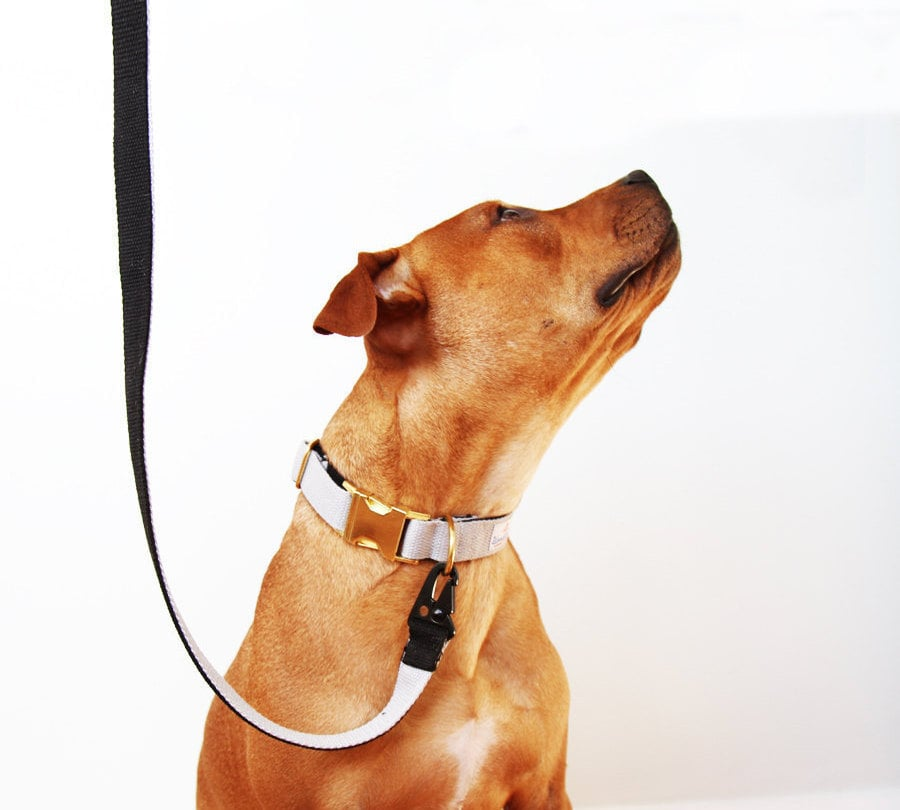 Matching Dog Webbing Collar and Leash Set Black and Grey, $55