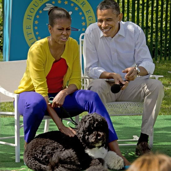 White House Easter Egg Roll 2012 and Bo Obama Pictures