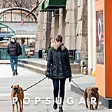 Jessica Biel had her two dogs on leashes for a walk around the Big Apple.
