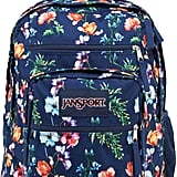 JanSport Mountain Meadow Backpack