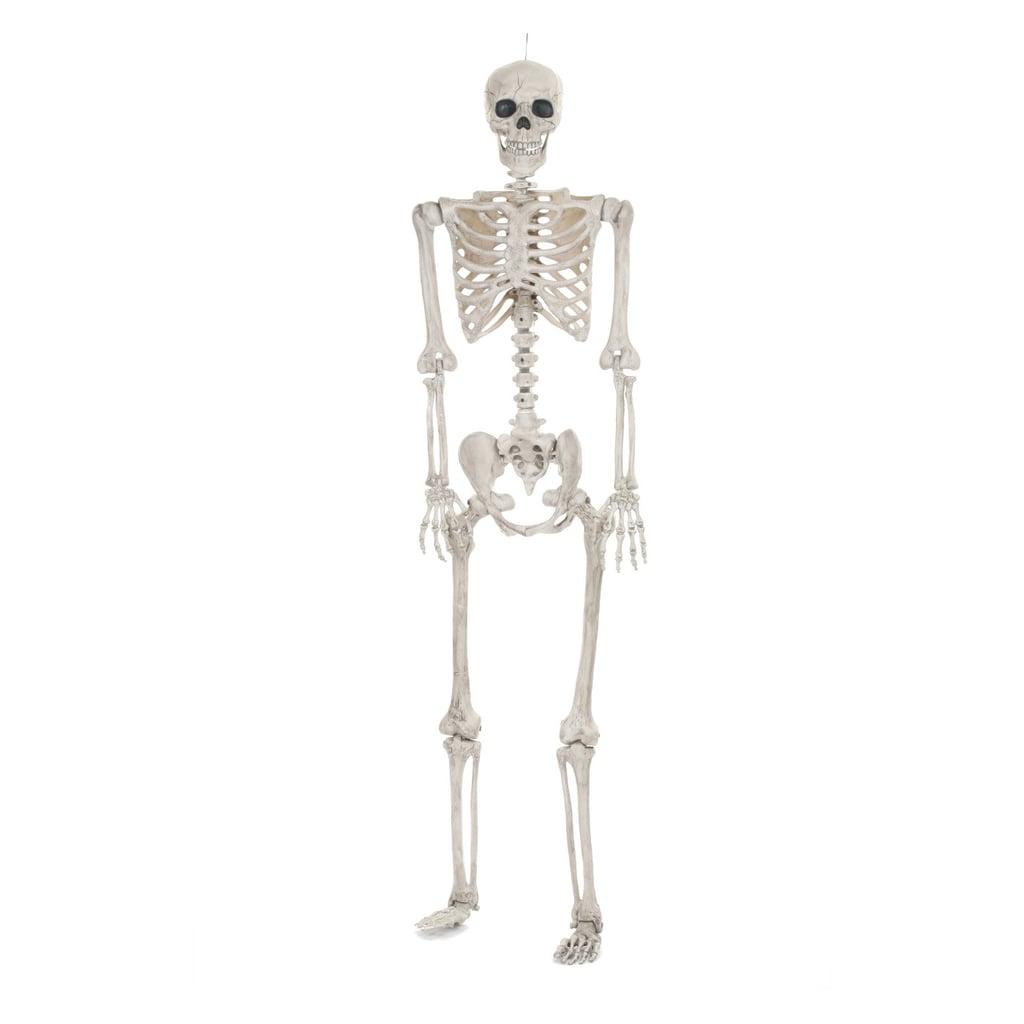 halloween lifesize posable skeleton | target halloween decorations
