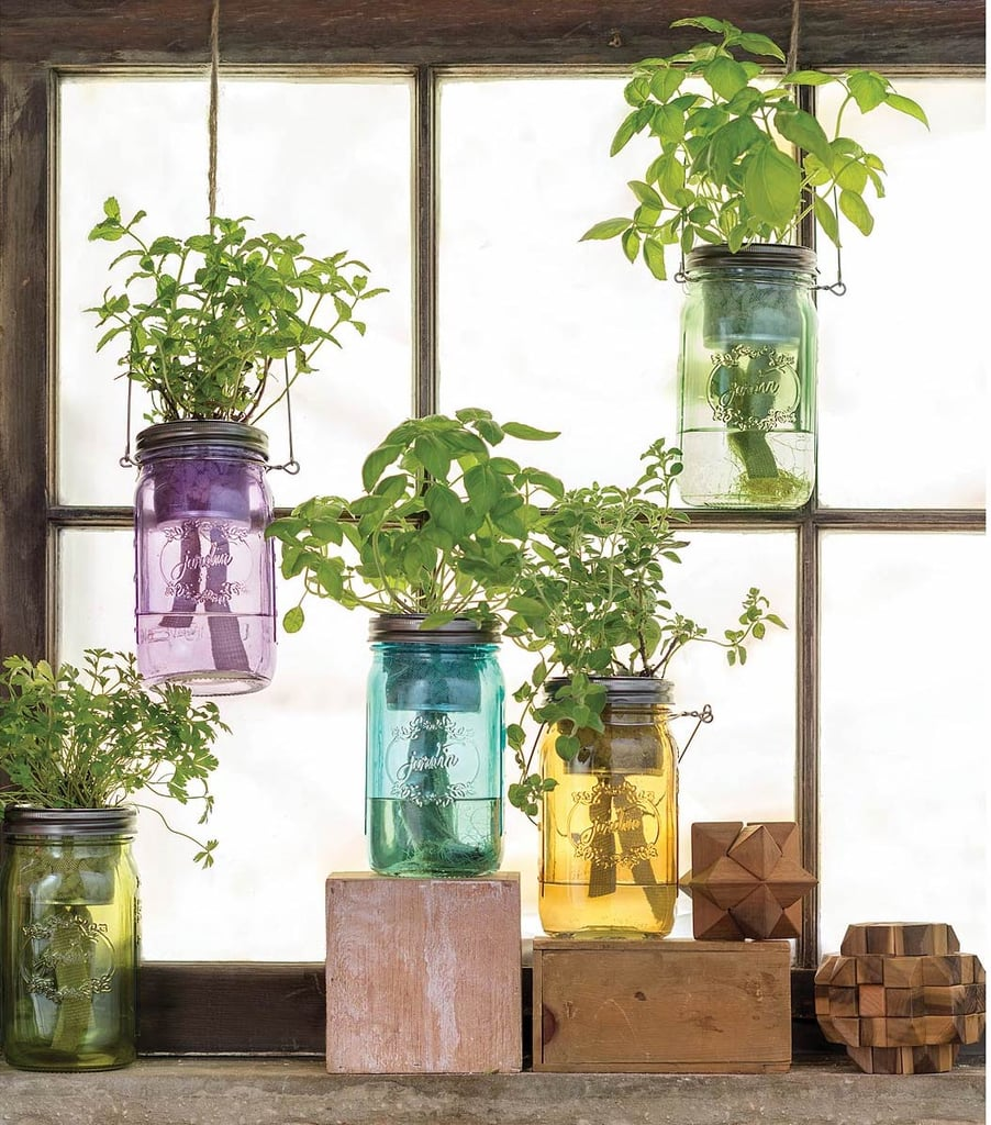 Best 20 Herb Garden Design 2017: Hang This Mason Jar Indoor Herb Garden ($20) In Your Kitchen.