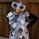 Upcycled Owl Dress