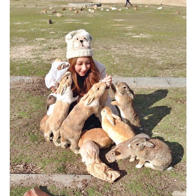 There's an island called Okunoshima in Japan filled with tame bunnies.