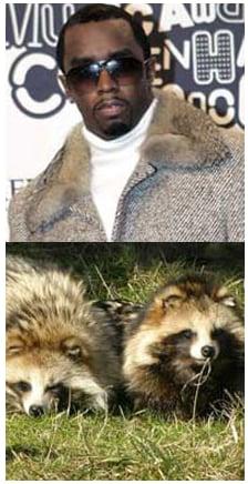 Fab Flash:  The Truth Behind Faux Fur