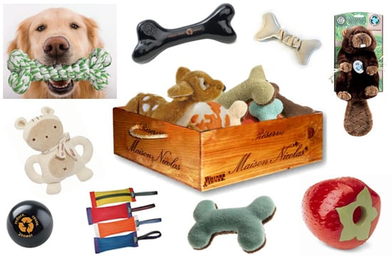 Take This Quiz and Win a Recycled Wine Crate Toy Box Filled with Eco-Friendly Dog Toys!