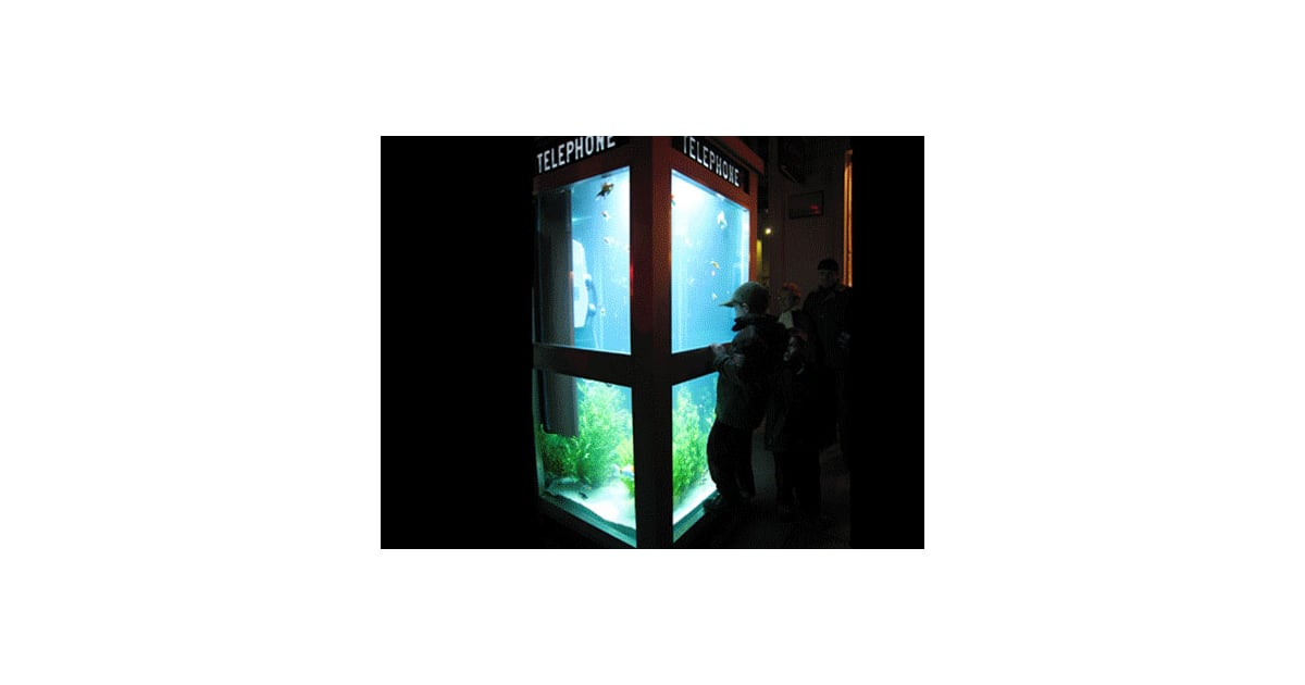 Aquarium Phone Booth From The Lyon Light Festival In