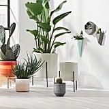 Rivet Mid-Century Modern Ceramic Indoor Outdoor Planter Flower Pot