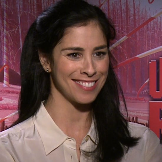 Sarah Silverman Interview For Wreck-It Ralph