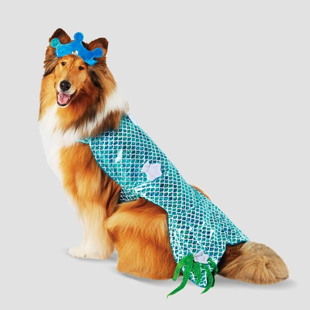 Mermaid Halloween Dog Costume
