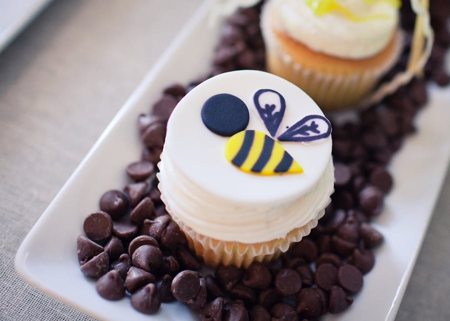 Bee Themed Gender Reveal Party
