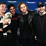 Sexy 5 Seconds of Summer Pictures