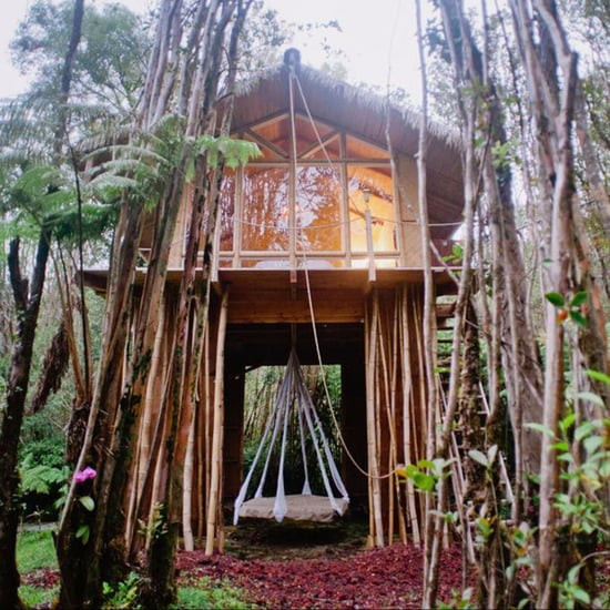 Tree House in Hawaii