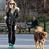 Amanda Seyfried took her dog, Finn, on a walk in NYC on Friday.
