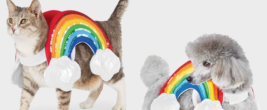 Pet Halloween Costumes For Cats and Dogs at Target 2020