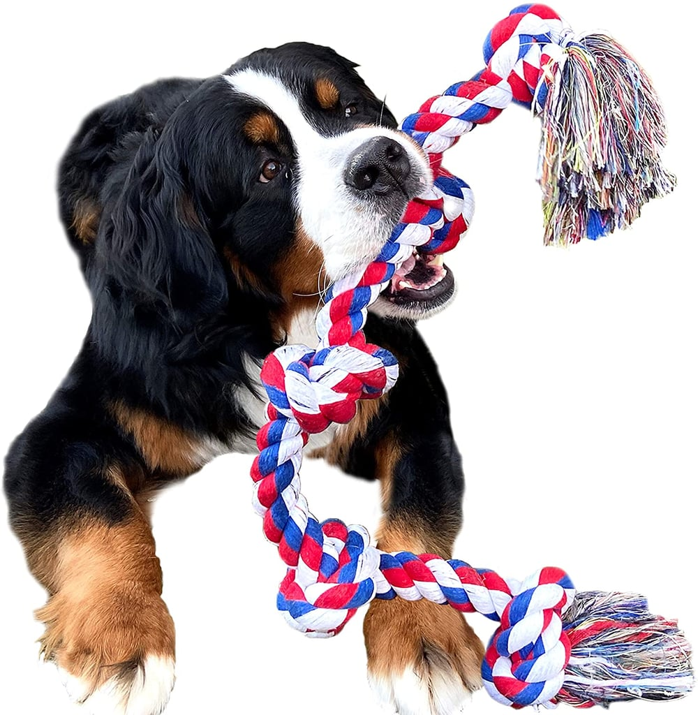 Youngever Dog Rope Toy
