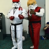 Martial Arts Stormtroopers