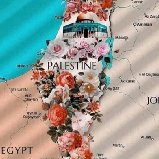 غوغل تحذف فلسطين من خرائطها ورواد تويتر يردون