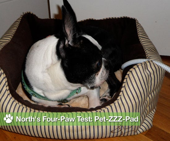Heating Pads For Pets