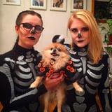 Meet David S. Pomkins, Halloween's Best Dressed Dog