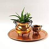 Copper Cauldron Cactus Planters