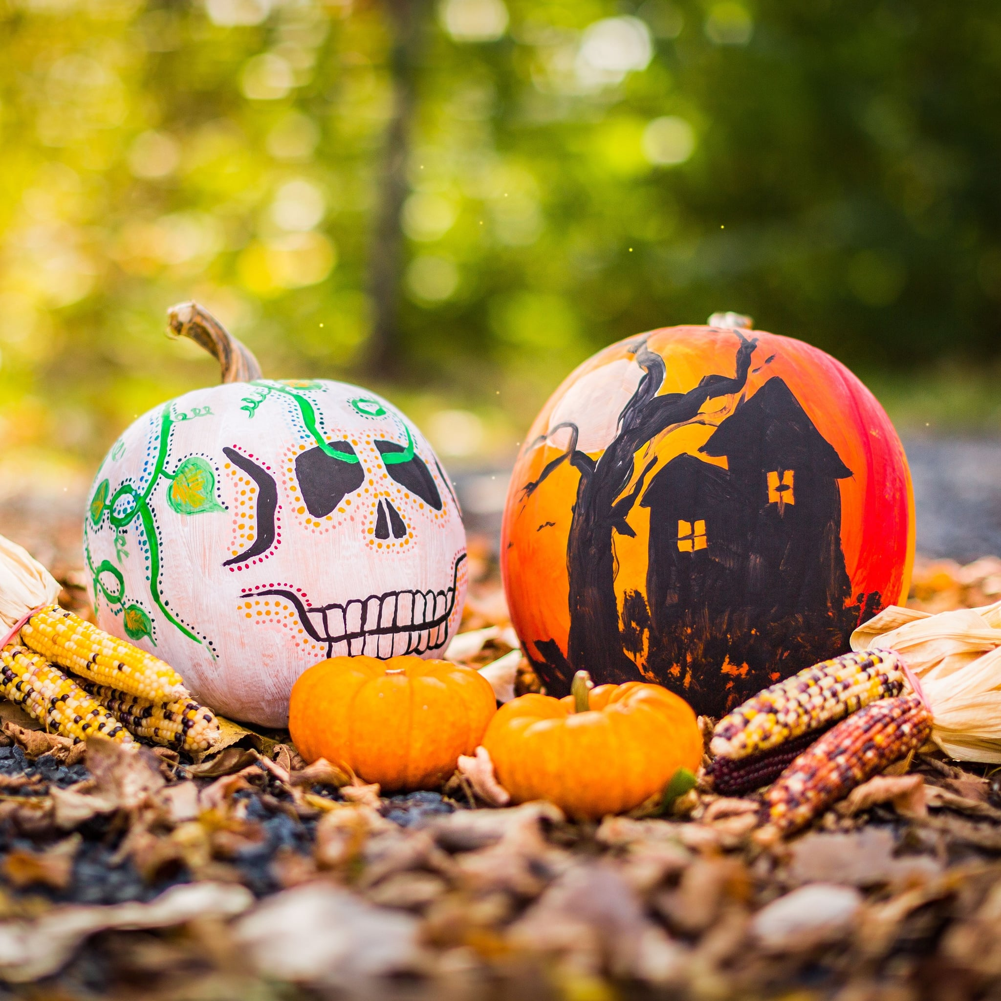 cheap things to do on halloween | popsugar smart living