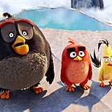 Bomb, Red, and Chuck From Angry Birds