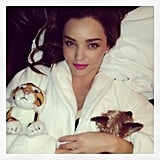 Miranda Kerr proves that even cozy time can be fabulous, especially when a tiger is involved. Source: Instagram user mirandakerr