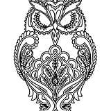 Get the coloring page: Owl