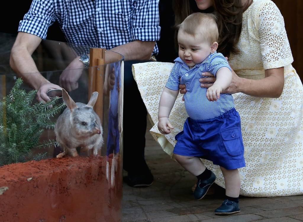 George's visit to the Taronga Zoo in Sydney, Australia, on April 20.