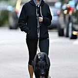 Nicole Richie and the new family pet, Iro, took a stroll in the chilly weather.