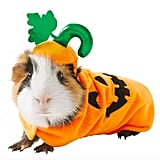 Thrills & Chills Small Pet Costume — Pumpkin