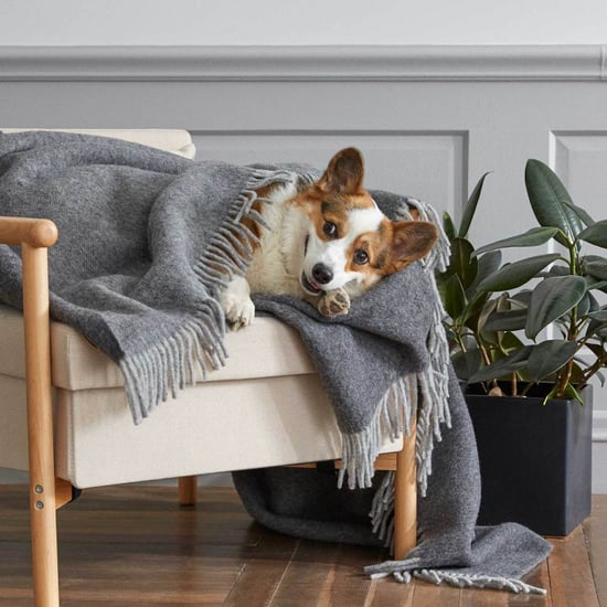 Best Gifts For Cosy-Home-Lovers