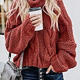 Asvivid Turtleneck Sweater