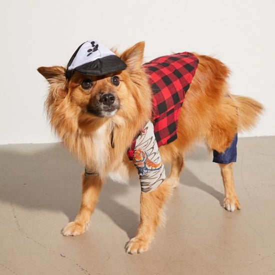 Urban Outfitters Has a Hipster Dog Costume For Halloween