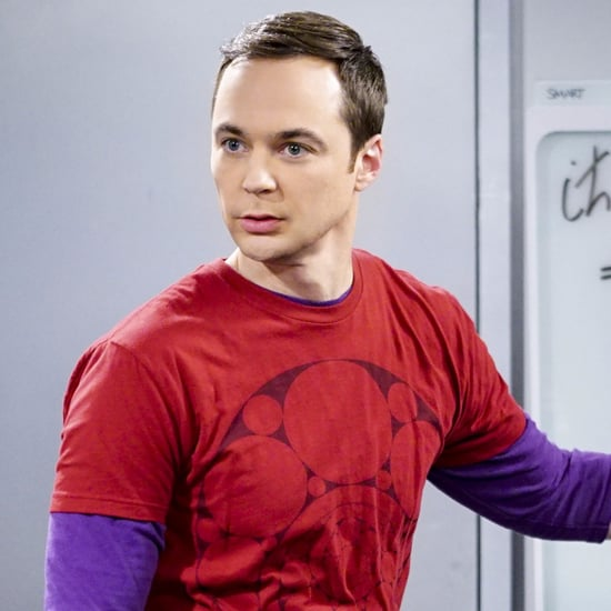 The Big Bang Theory Prequel Cast