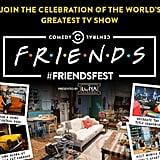 Visit the Friends Festive Event