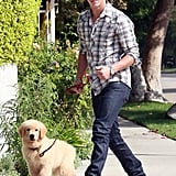 Nick Jonas was gifted with a Golden Retriever puppy, Elvis, on his 16th birthday and took him for a walk in Toluca Lake, CA, in September 2008.