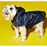 Ware of the Dog Hooded Dog Raincoat